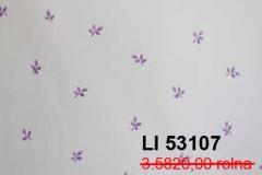 LI-53107r